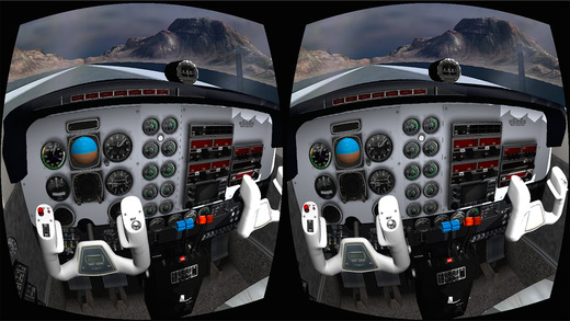Flight Simulator – Beenoculus
