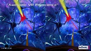 InMind VR2